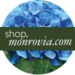 Click here to learn more about Monrovia Plants
